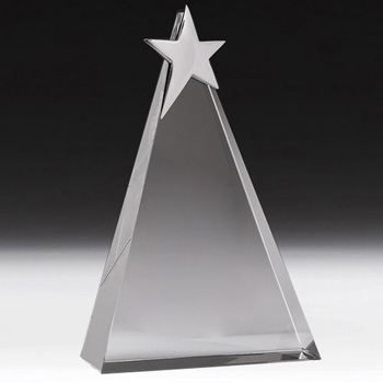 Arlington Triangle Star Award